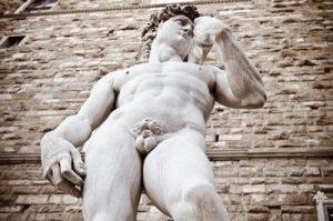 Câteva curiozități despre penis
